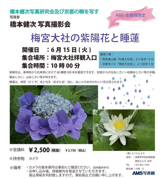 web_210615_.jpg